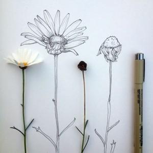 flowers_pen