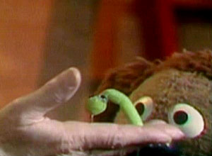 Inchworm, Fuzzy Bear, and Charles Aznavour's hand