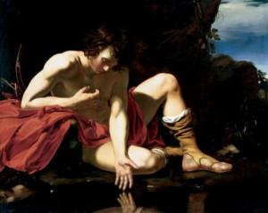 Narcissus_Dutch